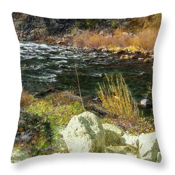 Along The Stream Throw Pillow