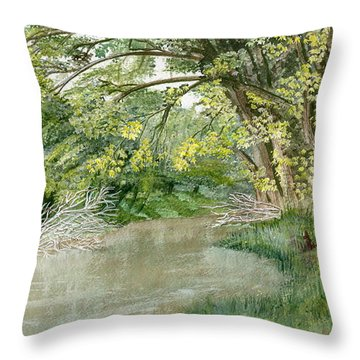 Throw Pillow featuring the painting Along The Susquehanna by Melly Terpening