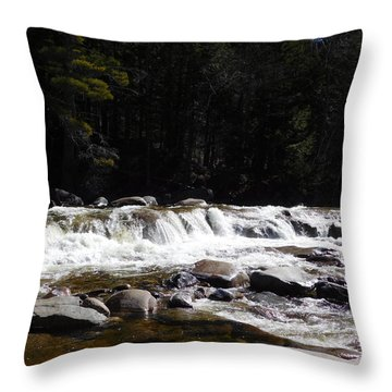 Along The Swift River Throw Pillow
