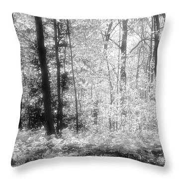 Along The Top Bw  Throw Pillow by Lyle Crump