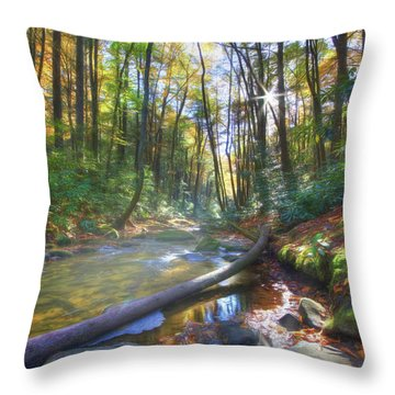 Along The Trail In Georgia Throw Pillow