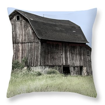 Throw Pillow featuring the photograph Along The Way by Kim Hojnacki