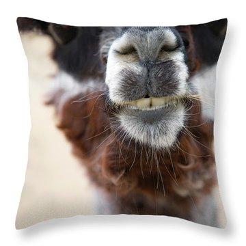 Alpaca #1 Throw Pillow