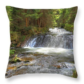 Alpine Fish Ladder Throw Pillow