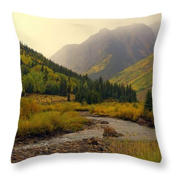 Alpine Loop Fall Throw Pillow by Marty Koch