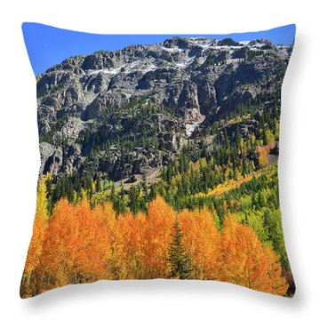 Throw Pillow featuring the photograph Alpine Loop Road Aspens by Ray Mathis