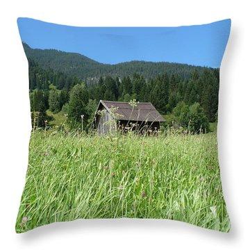 Alpine Meadow  Throw Pillow by Carol Groenen
