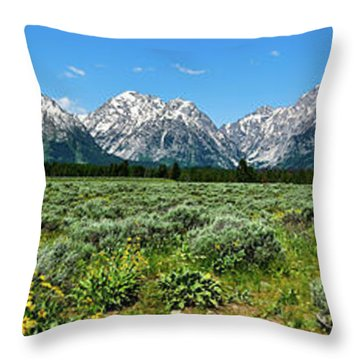 Alpine Meadow Teton Panorama II Throw Pillow by Greg Norrell