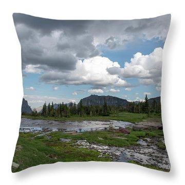 Alpine Oasis Throw Pillow