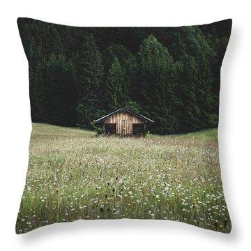 Alpine Symmetry Throw Pillow