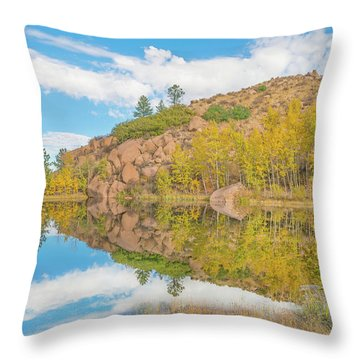 Alpine Vale Reflection  Throw Pillow