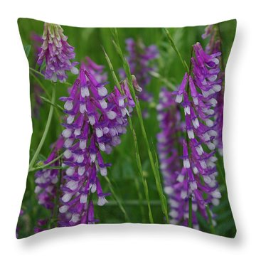 Alpine Vetch 1 Throw Pillow by Robyn Stacey
