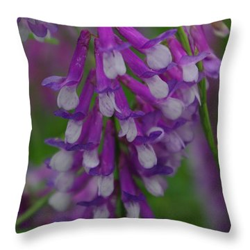 Alpine Vetch 2 Throw Pillow by Robyn Stacey