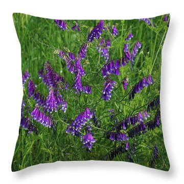 Alpine Vetch Throw Pillow by Robyn Stacey