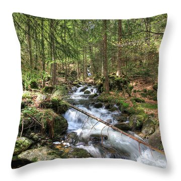 Alpine Water Falls Throw Pillow