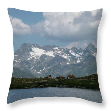 Alps Magenificence Throw Pillow