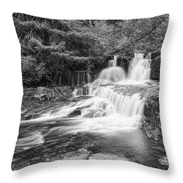 Alsea Falls II  Throw Pillow