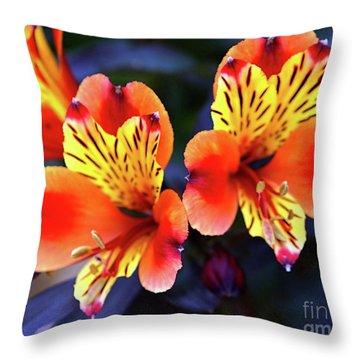 Alstroemeria Indian Summer Throw Pillow by Stephen Melia