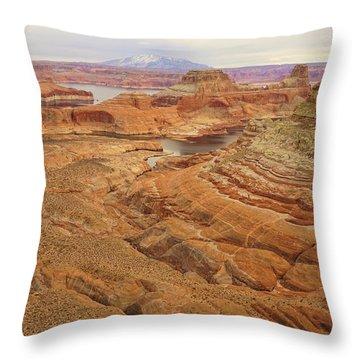 Alstrom Point Throw Pillow