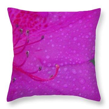 Althea Throw Pillow by Priscilla Richardson