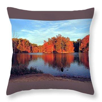 Alum Creek Landscape Throw Pillow by Angela Murdock