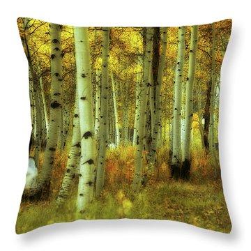 Throw Pillow featuring the photograph Alvarado Autumn 1 by Marie Leslie