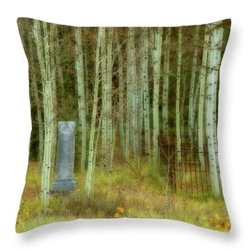 Throw Pillow featuring the photograph Alvarado Cemetery 41 by Marie Leslie