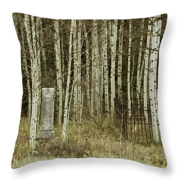 Throw Pillow featuring the photograph Alvarado Cemetery 42 by Marie Leslie