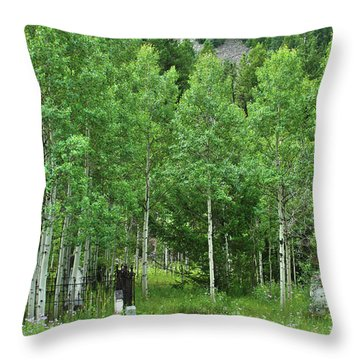 Throw Pillow featuring the photograph Alvarado Summer by Marie Leslie