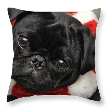 Alvin Throw Pillow by Trish Tritz