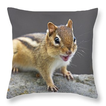Alvinnn... Throw Pillow