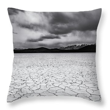 Throw Pillow featuring the photograph Alvord Desert by Cat Connor