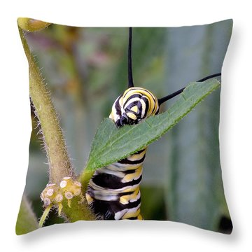 Always Eat Your Greens Throw Pillow
