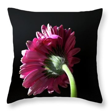 Always Face The Sunshine Throw Pillow by Rhonda McDougall