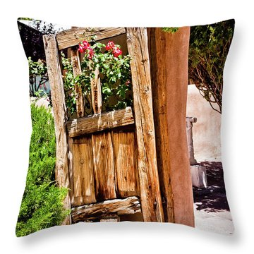 Always Open Throw Pillow by Jill Smith