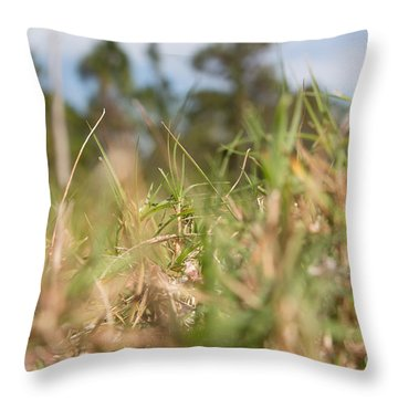 Always Searching Throw Pillow