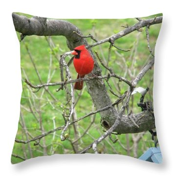 Always With Us -cardinals Throw Pillow