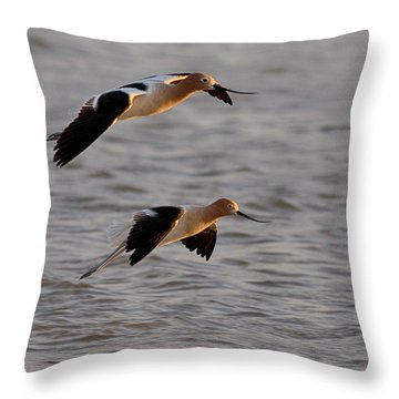 Am Avocet Throw Pillow