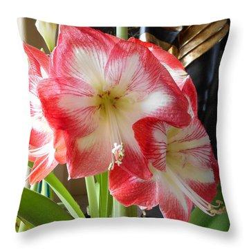 Amaryllis 8 Throw Pillow