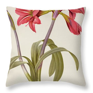Amaryllis Brasiliensis Throw Pillow