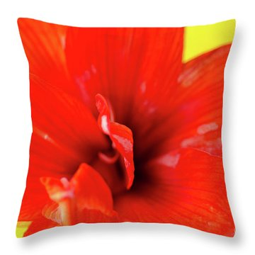 Amaryllis Jaune Red Amaryllis Flower On Bright Yellow Background Throw Pillow by Andy Smy