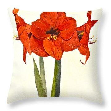 Amaryllis- Posthumously Presented Paintings Of Sachi Spohn  Throw Pillow