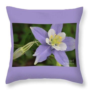 Amazing Colorado Columbine Throw Pillow