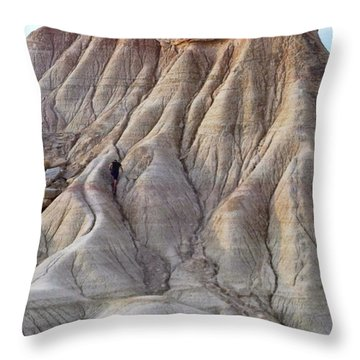 Amazing Geology Found In A Little Throw Pillow