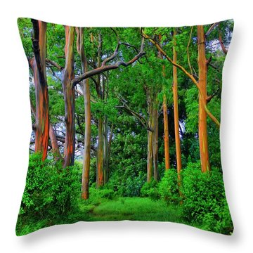 Amazing Rainbow Eucalyptus Throw Pillow