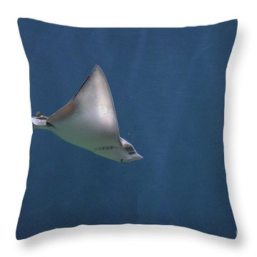 Amazing Stingray Underwater In The Deep Blue Sea  Throw Pillow