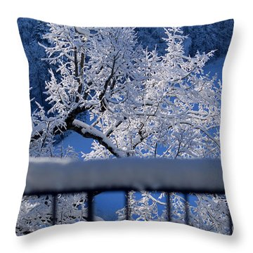 Throw Pillow featuring the photograph Amazing - Winterwonderland In Switzerland by Susanne Van Hulst