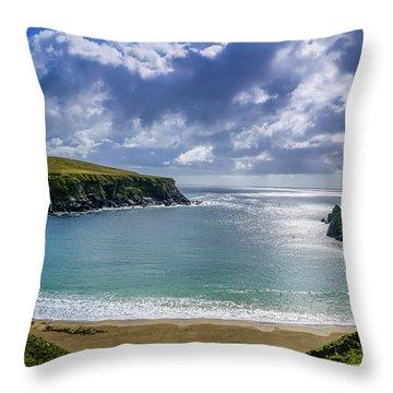 Amazingly Beautiful Throw Pillow
