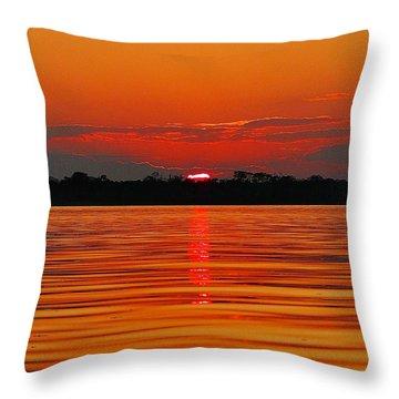 Amazon Gold Throw Pillow