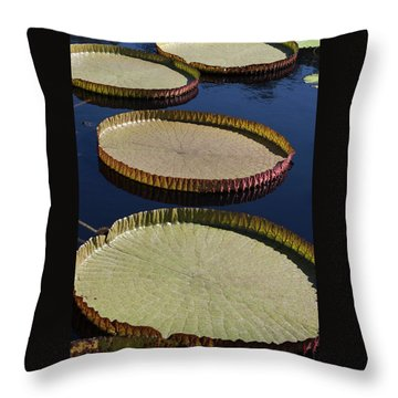 Amazonas Lily Pads II Throw Pillow by Suzanne Gaff